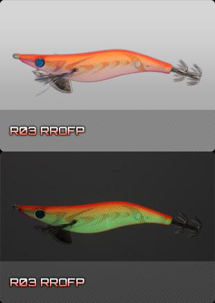 R03 RROFP